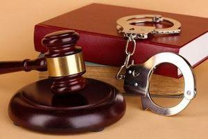 Khởi tố vụ án xảy ra tại Công ty bất động sản Phát An Gia