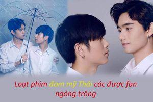 Loạt phim boylove Thái Lan năm 2020 đang được các fan đón chờ