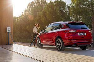 Ford Escape vượt mức khí thải cho phép tại châu Âu
