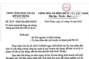Ninh Thuận 'tuýt còi' Công ty Cổ phần Vinhcorp phân lô bán nền tự phát
