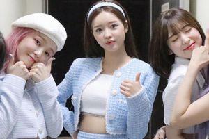 Nhóm nhạc Hàn suýt tan rã ngay sau khi ra mắt