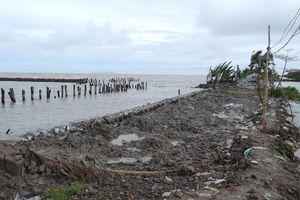 Cà Mau ban bố tình huống sạt lở khẩn cấp đê biển Tây