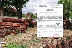Sa thải Giám đốc và 2 cán bộ bảo vệ rừng ở Kon Tum