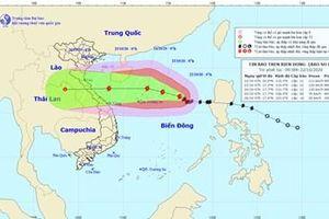 Bão số 8 sẽ tăng cấp khi tiến gần Quần đảo Hoàng Sa