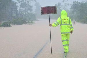 Ứng phó bão số 8: Xử phạt nghiêm phương tiện cố tình vào khu vực nguy hiểm