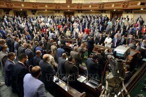 Cử tri Ai Cập ở nước ngoài bắt đầu bỏ phiếu bầu cử Hạ viện