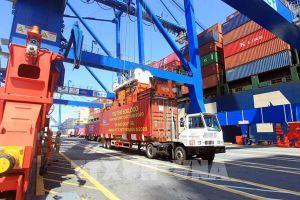 Tân Cảng Hải Phòng đón TEU thứ 500.000 thông qua cảng năm 2020