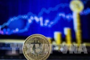 Đồng Bitcoin lên giá cao kỷ lục trong hơn 1 năm