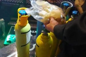 Nghệ An: Phát hiện 15 đối tượng phê ma túy