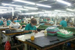 Nhiều doanh nghiệp xuất khẩu da giày có đơn hàng trở lại