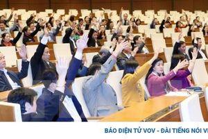 'Mong đại biểu Quốc hội góp ý sâu sắc vào Dự thảo văn kiện trình Đại hội XIII'