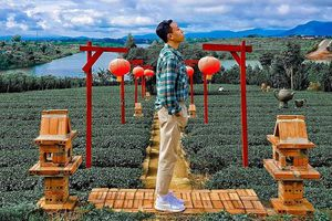 Chùa Trà và loạt điểm đến ở Bảo Lộc