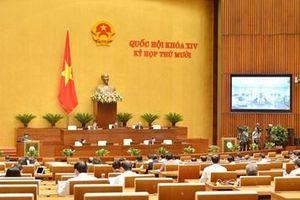 'Siết' lại quy định về cấp giấy phép đưa người lao động Việt Nam đi làm việc ở nước ngoài