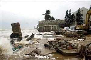 Xây dựng chiến lược tăng khả năng chống thảm họa thiên nhiên ven biển