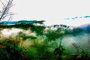 Săn mây ở Khánh Sơn