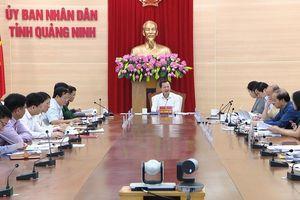 Ban cán sự Đảng, Thường trực UBND tỉnh cho ý kiến về một số nội dung quan trọng