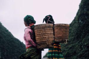 Khám phá Việt Nam