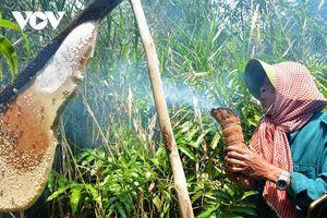 Điểm danh những đặc sản nổi tiếng gần xa của vùng Đất Mũi – Cà Mau