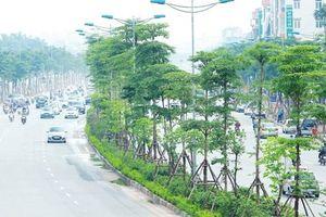 Chất lượng không khí trong tuần duy trì ở mức tốt