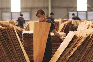 Doanh nghiệp cần hiểu biết chính xác, đầy đủ về EVFTA