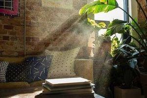 Ô nhiễm không khí trong nhà – Thủ phạm giấu mặt gây hại cho sức khỏe