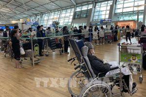 Đưa hơn 350 công dân Việt Nam từ Canada và Hàn Quốc về nước