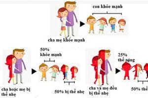 Cần quan tâm phòng ngừa bệnh Thalassemia