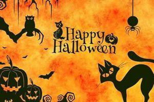 Những trò chơi lý thú và ma quái trong lễ hội Halloween truyền thống