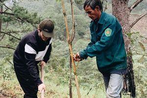Hà Anh Tuấn trồng hai cánh rừng ở Lâm Đồng, Đà Nẵng