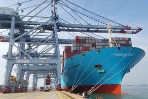 Bà Rịa - Vũng Tàu: Đón 'siêu tàu' container lớn nhất thế giới