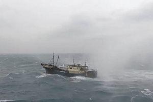Trung Quốc cho hàng trăm tàu bao vây đảo, lực lượng chấp pháp Đài Loan cho tàu xua đuổi