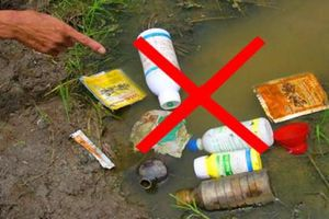 31 loại thuốc bảo vệ thực vật bị cấm sử dụng tại Việt Nam