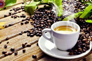 Giá cà phê hôm nay 26/10: Đi ngang, chờ lực tăng những tháng cuối năm