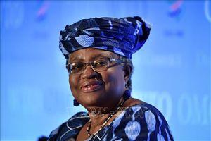 EU ủng hộ ứng viên Nigeria trở thành Tổng Giám đốc WTO