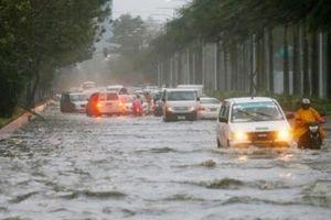 Yêu cầu không tổ chức kinh doanh vận tải trong thời gian bão số 9 đổ bộ