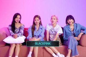 Trò chơi 'Super Star YG' chính thức mở đăng ký trong hôm nay: Blackpink kêu gọi ủng hộ!