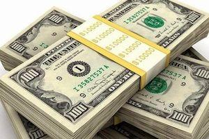 9 tháng, TP. HCM đón 4 tỷ USD kiều hối, dự kiến cả năm đạt 5,5 tỷ USD