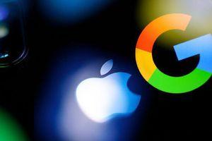 Google chi 12 tỷ USD mỗi năm để trở thành công cụ tìm kiếm độc quyền trên iPhone