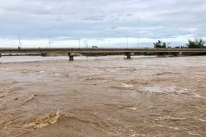 Nước lũ sông vệ lên nhanh, khẩn cấp di dời dân khỏi vùng trũng