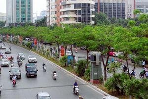Phấn đấu nâng tỷ lệ cây xanh tại Hà Nội lên 8-10m2/người vào năm 2025