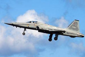 Tiêm kích F-5E của Đài Loan gặp nạn, phi công thiệt mạng