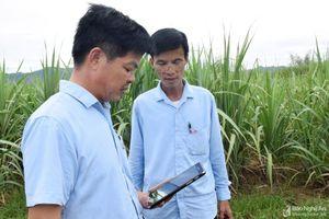 Công ty CP Mía đường Sông Con ứng dụng công nghệ trong quản lý vùng nguyên liệu