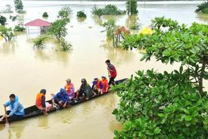 Liên minh châu Âu hỗ trợ 1,3 triệu euro giúp người dân vùng lũ ở Việt Nam