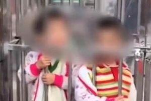 Hai đứa trẻ bị cha mẹ nhốt trong lồng sắt giữa chợ với lý do gây tranh cãi