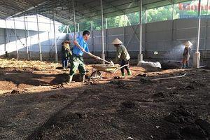 Hà Nội: Cần liên kết '4 nhà' để xử lý môi trường khu vực nông thôn