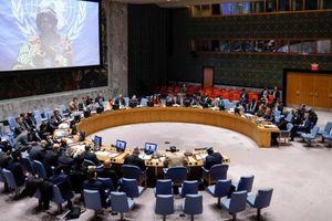 Việt Nam ủng hộ các tiến trình pháp lý quốc tế
