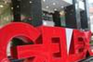 GEX dự kiến phát hành 12 triệu cổ phiếu cho người lao động