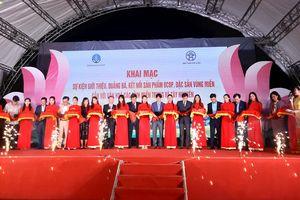 Giới thiệu sản phẩm chương trình OCOP gắn với văn hóa các tỉnh miền Trung - Tây Nguyên