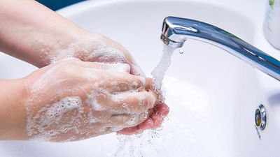 Tại sao bạn nên ngưng sử dụng hầu hết các loại xà phòng diệt khuẩn?