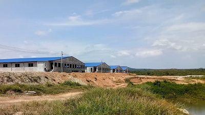Trại heo rộng 14,000m2 đe dọa ô nhiễm nguồn nước hồ Trị An